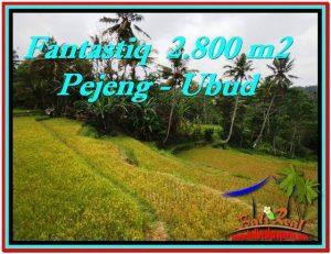 DIJUAL TANAH di UBUD 2,800 m2 di Ubud Tampak Siring
