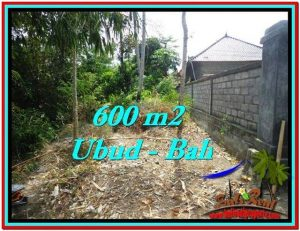 DIJUAL MURAH TANAH di UBUD BALI 6 Are di Sentral Ubud