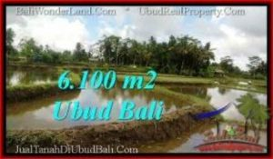 JUAL MURAH TANAH di UBUD 61 Are View Sawah, link. villa