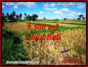 TANAH MURAH di UBUD BALI DIJUAL 9,500 m2 di Sentral Ubud