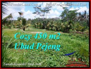 DIJUAL TANAH di UBUD BALI 450 m2 di Ubud Pejeng