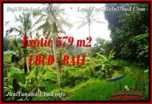 TANAH MURAH JUAL di UBUD BALI 5.79 Are View Sawah dan sungai