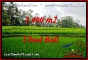 TANAH di UBUD BALI DIJUAL MURAH 1,400 m2 di Ubud Pejeng