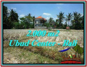 TANAH di UBUD JUAL MURAH 2,000 m2 View Sawah, Link. Villa