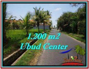 TANAH di UBUD JUAL MURAH 1,200 m2 View Sawah, sungai kecil, link Villa