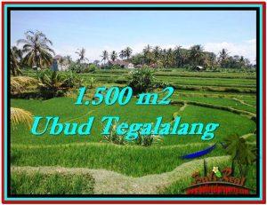 JUAL TANAH MURAH di UBUD 1,500 m2 di Ubud Tegalalang