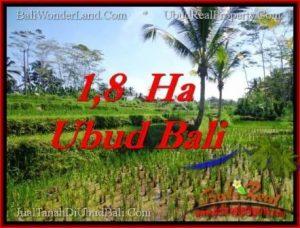 TANAH MURAH di UBUD BALI DIJUAL 160 Are di Ubud Payangan