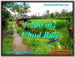 JUAL TANAH MURAH di UBUD BALI TJUB559